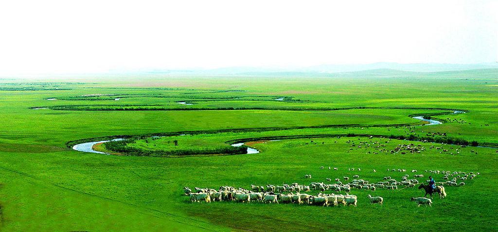 我们推进农牧业转型