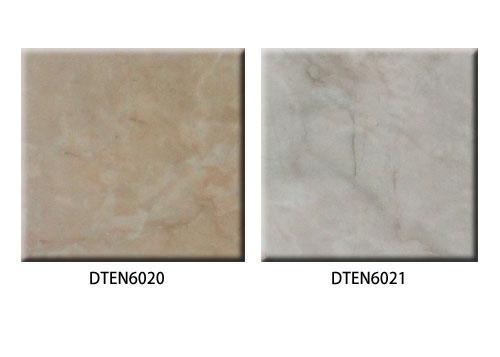 福耐DTEN6020&DTEN6021