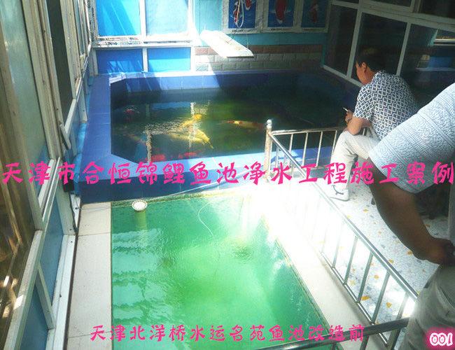锦鲤鱼池净化-水运名苑