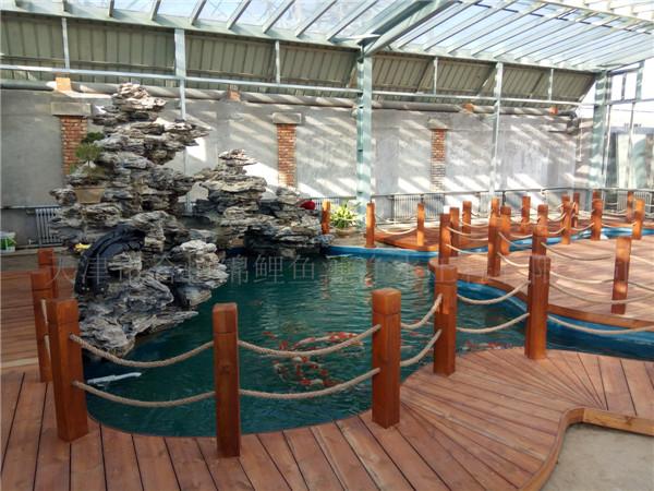 天津錦鯉魚池