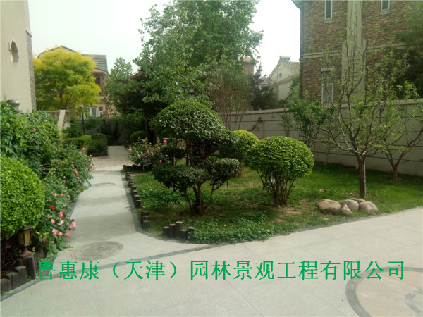 天津庭院景观